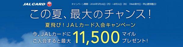 20160616JALカード審査25