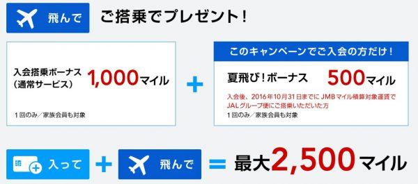 20160616JALカード審査23