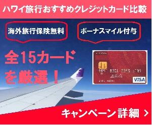 201709osusume-dylp05300